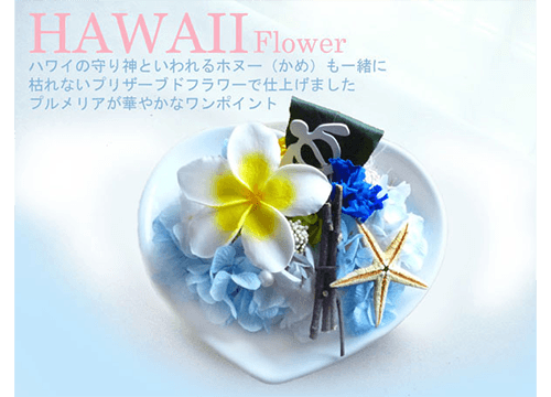 Hawaii Flower
